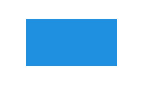 NSI_logo_500px